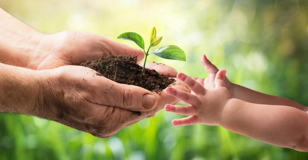 cashback world karola ekologiczne rolnictwo