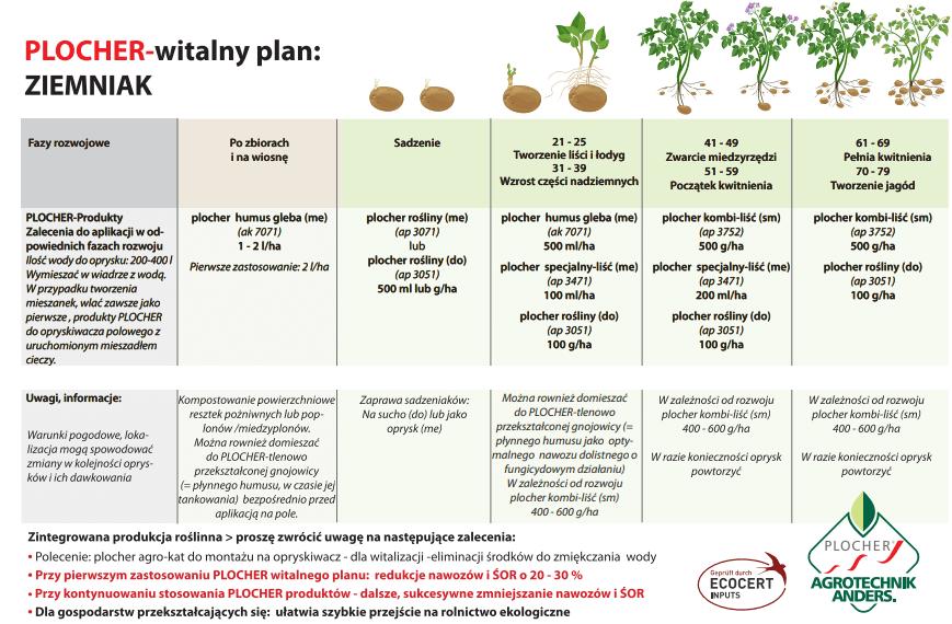 witalny plan ziemniak plocher