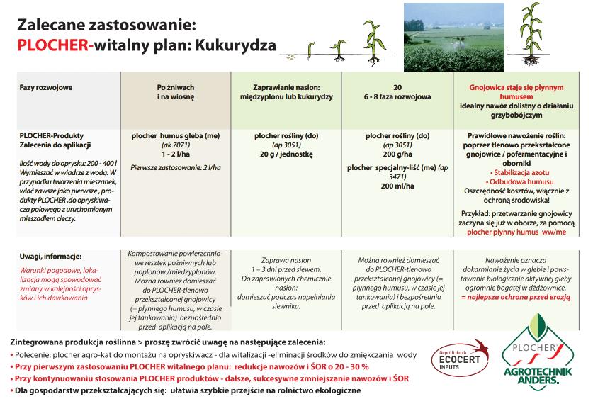 plany witalne kukurydza plocher polska